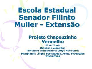 Escola Estadual Senador Filinto Muller - Extensão