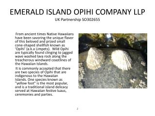 EMERALD ISLAND OPIHI COMPANY LLP UK Partnership SO302655