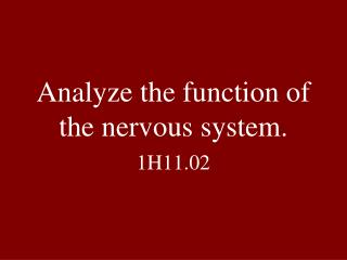 Analyze the function of the nervous system.