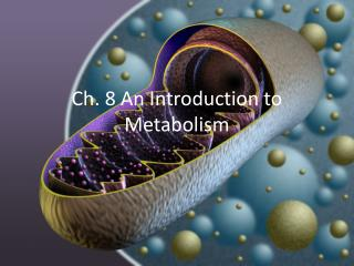 Ch. 8 An Introduction to Metabolism