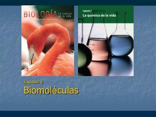 Capítulo 3 Biomol é culas