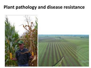 P lant  pathology and disease resistance