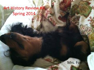Art History Review #5 Spring 2014