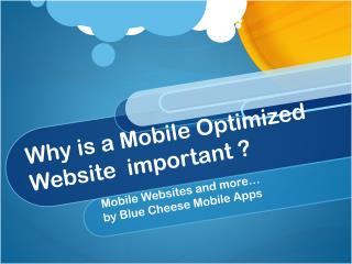 Why is a Mobile Optimized Website  important ?