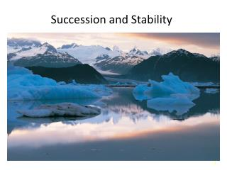 Succession and Stability