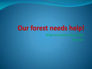 Our forest needs help!