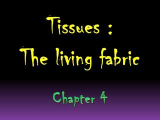 Tissues :  The living fabric Chapter 4