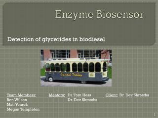 Enzyme Biosensor