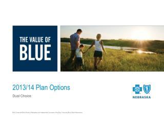 2013/14 Plan Options