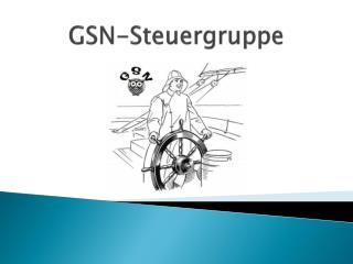 GSN-Steuergruppe
