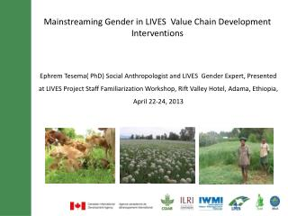 Mainstreaming Gender in LIVES  Value Chain Development Interventions