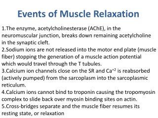 Events of Muscle Relaxation