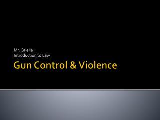 Gun Control & Violence