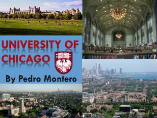 University Of Chicago