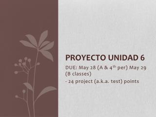 PROYECTO UNIDAD 6