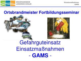 Gefahrguteinsatz Einsatzma�nahmen  -  GAMS  -
