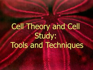 Cell Theory and Cell Study:  Tools and Techniques