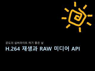H.264  재생과  RAW 미디어  API