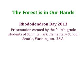 The Forest is in Our Hands
