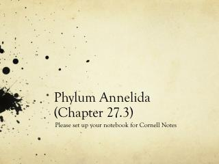 Phylum Annelida  (Chapter 27.3)