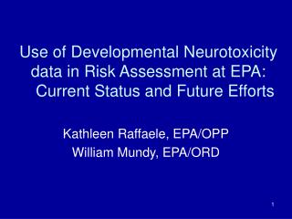 Use of Developmental Neurotoxicity data in Risk Assessment at EPA:    Current Status and Future Efforts