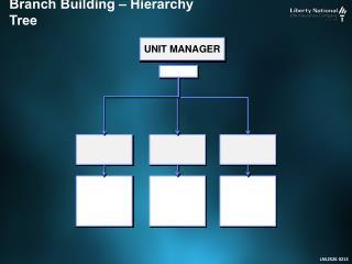 Branch  Building – Hierarchy Tree