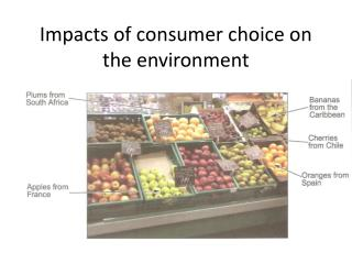 Impacts of consumer choice on the environment