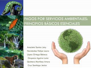 PAGOS POR SERVICIOS AMBIENTALES: PRINCIPIOS BÁSICOS ESENCIALES