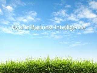 Hybrid Business Intelligence