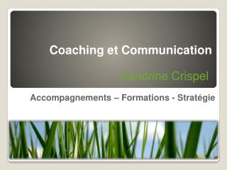 Accompagnements – Formations - Stratégie