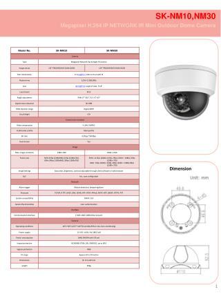 SK-NM10,NM30  Megapixel H.264 IP  NETWORK IR Mini Outdoor Dome Camera