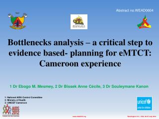Bottlenecks analysis – a critical step to evidence based- planning for eMTCT: Cameroon experience