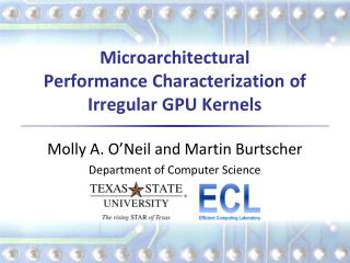 Microarchitectural Performance Characterization of Irregular  GPU Kernels