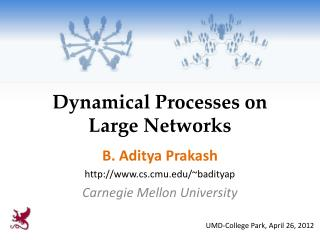 Dynamical Processes on Large Networks