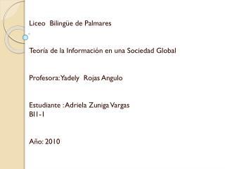 Liceo  Bilingüe de Palmares Teoría de la Información en una Sociedad Global