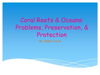 Coral Reefs & Oceans: Problems, Preservation, & Protection