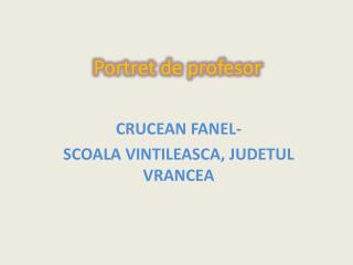 Portret de profesor