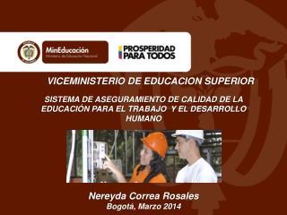 VICEMINISTERIO DE EDUCACION  SUPERIOR