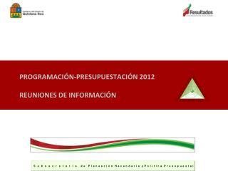 PROGRAMACIÓN-PRESUPUESTACIÓN 2012 REUNIONES DE INFORMACIÓN