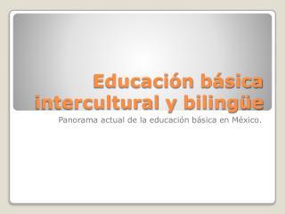 Educación básica  intercultural  y bilingüe