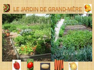 LE JARDIN DE GRAND-MÈRE