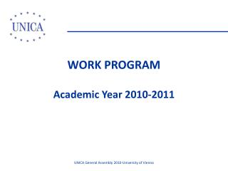 WORK PROGRAM Academic Year 2010-2011