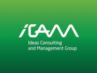 iCAM  Group