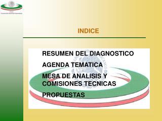 INDICE  RESUMEN DEL DIAGNOSTICO AGENDA TEMATICA MESA DE ANALISIS Y COMISIONES TECNICAS PROPUESTAS