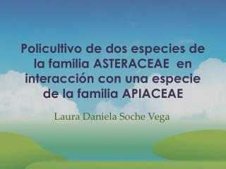 Laura Daniela Soche Vega