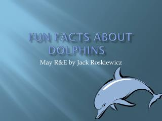 Fun Facts about Dolphins