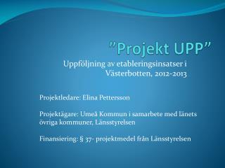 """""""Projekt UPP"""""""