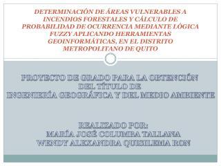 PROYECTO DE GRADO PARA LA OBTENCIÓN  DEL TÍTULO DE  INGENIERÍA GEOGRÁFICA Y DEL MEDIO AMBIENTE