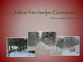 Julbrev från familjen Gunnarsson -  en liten summering av årets bravader