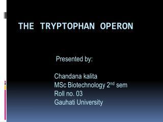 The tryptophan  operon